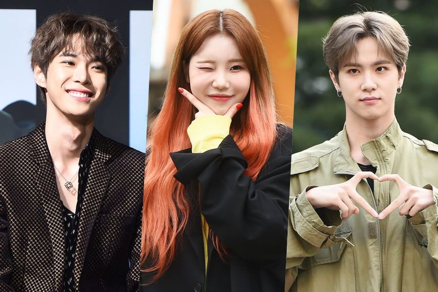 "NCT's Doyoung, MOMOLAND's JooE, Kim Dong Han, And More To Reportedly Appear On ""Law Of The Jungle"""
