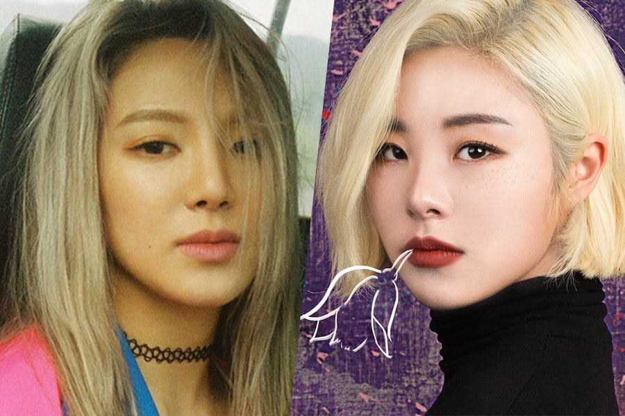 Girls' Generation's Hyoyeon And MAMAMOO's Wheein Confirmed As Next