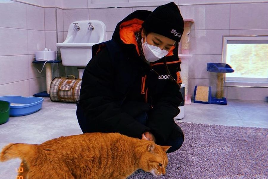 Sandara Park Makes Donation To Help Abandoned Animals