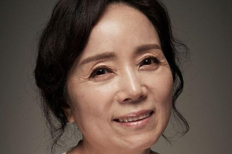 Veteran Actress Kim Min Kyung Passes Away