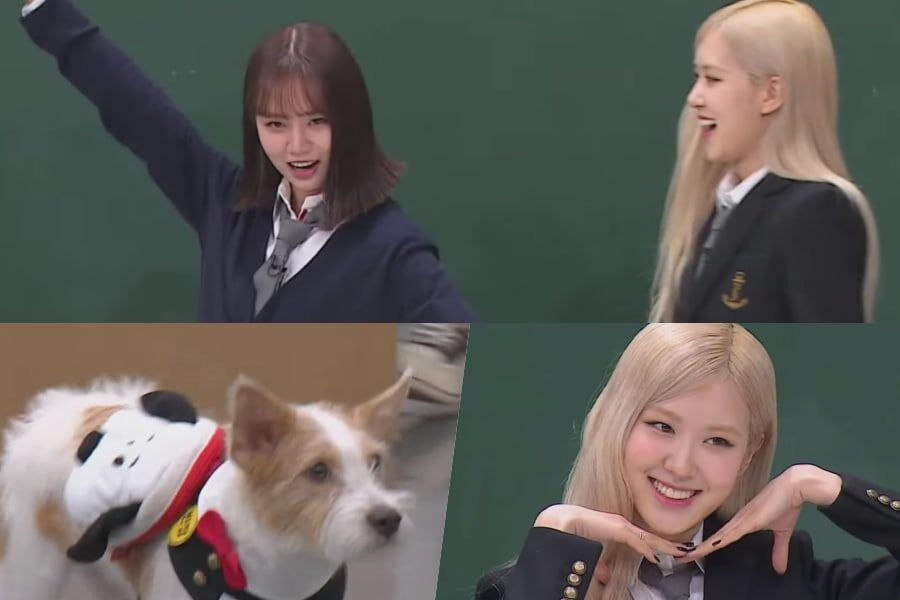 """Watch: BLACKPINK's Rosé And Girl's Day's Hyeri Bring The Laughs In """"Ask Us Anything"""" Preview (Feat. Rosé's Puppy)"""