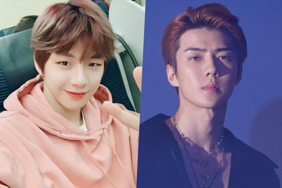"Kang Daniel To Make Special Appearance On tvN's ""Coffee Friends"" For EXO's Sehun"