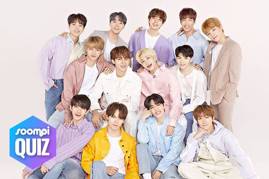 QUIZ: What Is Your Relationship With SEVENTEEN? | Soompi