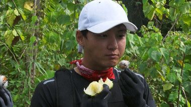 Law of the Jungle Episode 333