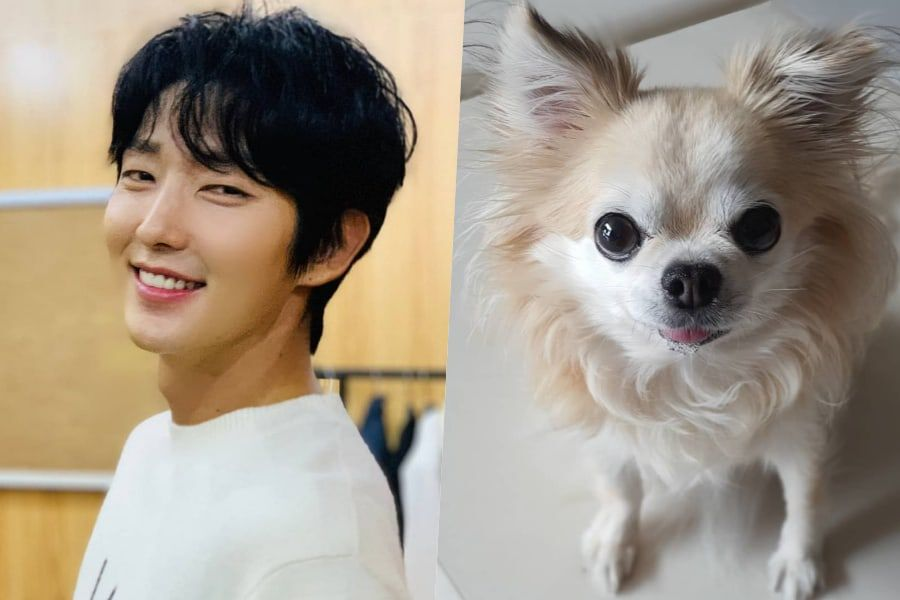 Lee Joon Gi Writes Heartfelt Post About The Passing Of His Dog