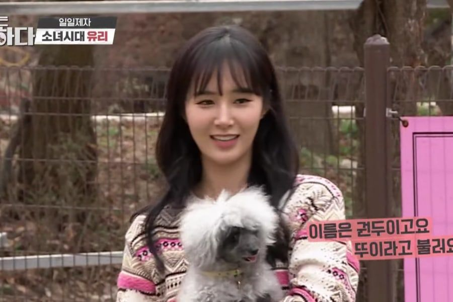 adopt dog