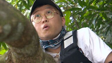 Law of the Jungle Episode 327