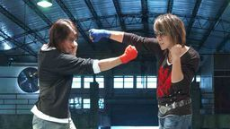 Mr. Fighting