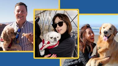 宠物加油!狗狗去旅行 (Pets GO! Doggy Trip)