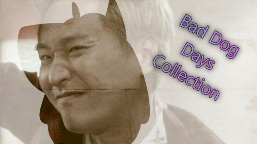 Bad Dog Days' collection