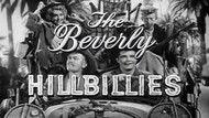 The Best of the Beverly Hillbillies