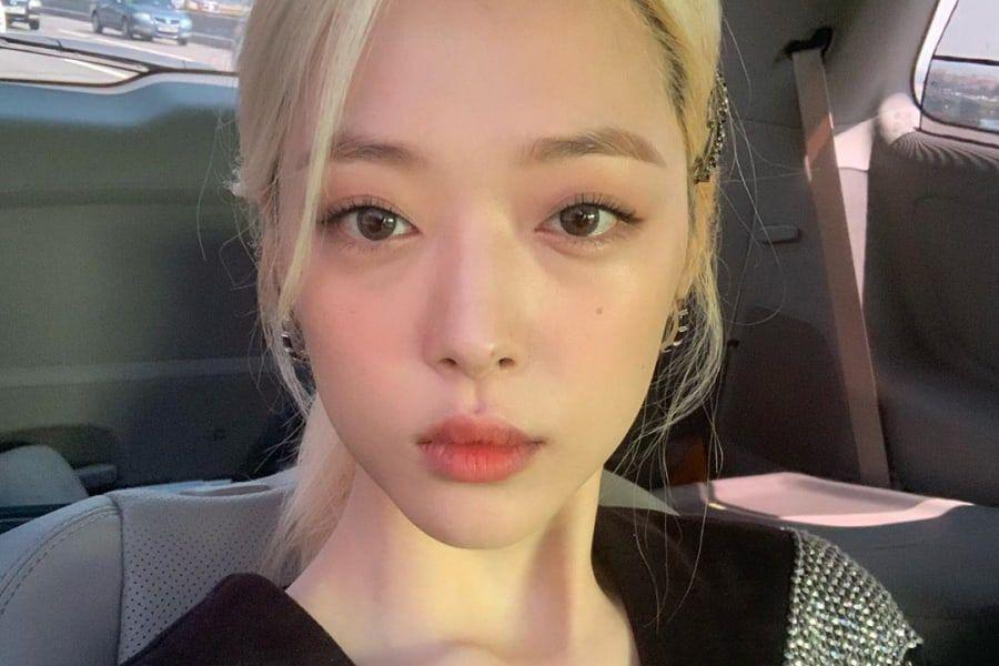 Individual Under Investigation As Source Of Leaked Information About Sulli's Passing