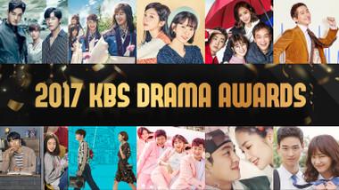 Premios KBS de Series 2017