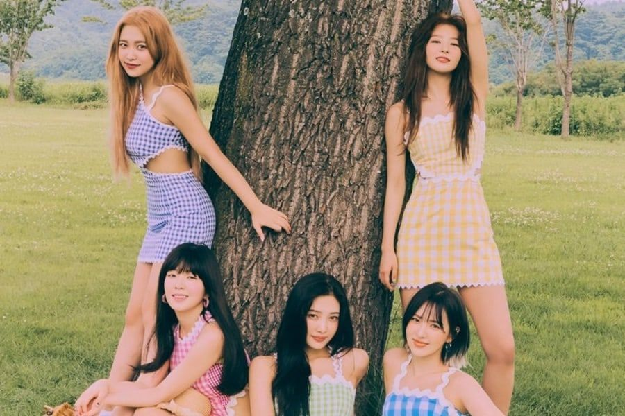 Designer Paris Starn States Alleged Plagiarism Issue Has Been Resolved With Red Velvet's Visual Director
