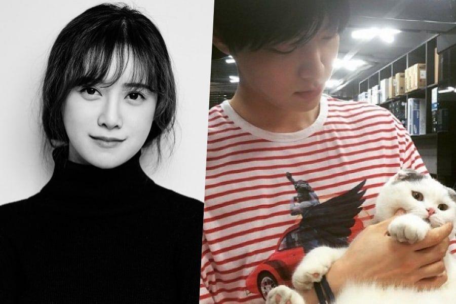 Ku Hye Sun Says She Cannot Divorce Ahn Jae Hyun Due To Cat Custody Issues